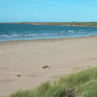Anglesey dog-friendly pub and beach walks, Wales - Anglesey dog-friendly pub and dog walk.jpg