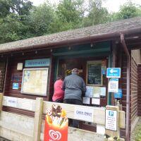 A696 Lakeside dog walk with cafe, Northumberland - Northumberland dog walking places.jpg