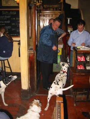 Meon Valley dog-friendly pub and walkies, Hampshire - Driving with Dogs