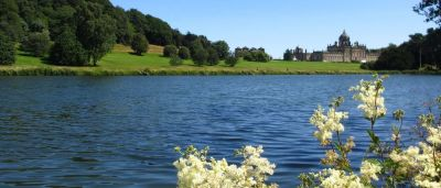 A64 dog walk by the river and dog-friendly dining, North Yorkshire - Driving with Dogs