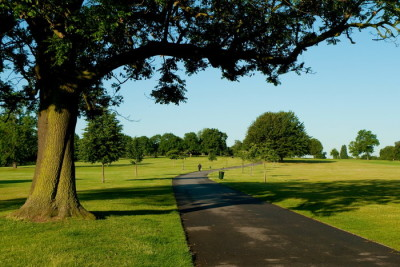 Brockwell Park dog walks, Herne Hill, Surrey - Driving with Dogs