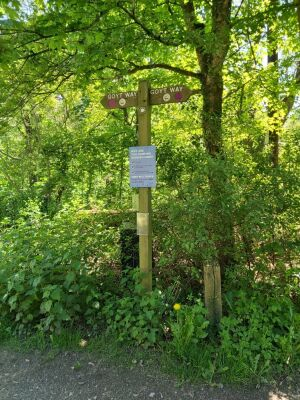 Torrs Riverside Park dog walk, Derbyshire - Driving with Dogs