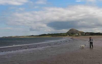 Yellowcraig dog-friendly beach, Scotland - Driving with Dogs
