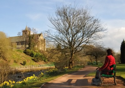 A9 dog walk in Dunblane, Scotland - Driving with Dogs