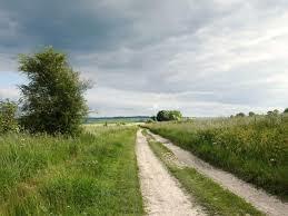 Dog walk on the ancient Ridgeway Trail, Oxfordshire - scutchamers-knob.jpg