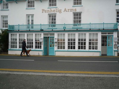 Aberdovey dog-friendly hotel, Wales - Driving with Dogs