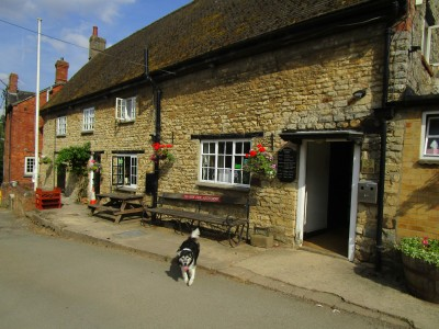 A43 dog-friendly pub and dog walk near Towcester, Northamptonshire - Driving with Dogs