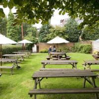 Lovely dog-friendly pub and dog walks near Berkhamstead, Hertfordshire - Dog walks in Hertfordshire