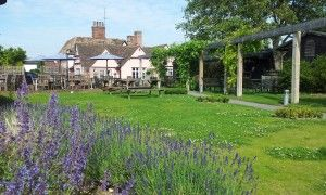 Dog-friendly dining pub near the M11, Cambridgeshire - Driving with Dogs