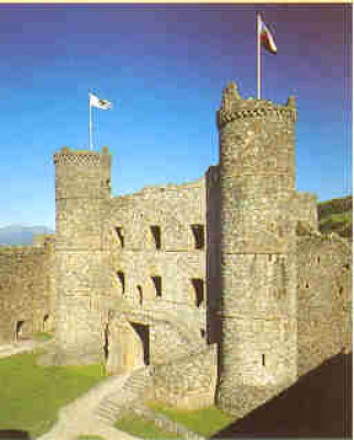 Harlech dog-friendly bar/hotel, Wales - Driving with Dogs