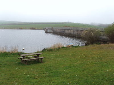 A39 lakeside stroll and dog-friendly cafe, Cornwall - Driving with Dogs