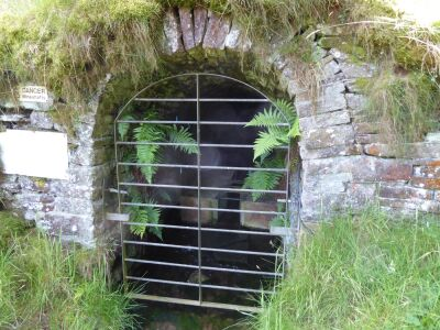 Heritage dog walk and woodland pool, Cumbria - Driving with Dogs