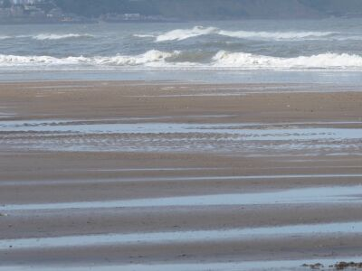 Reighton Sands dog-friendly beach, Yorkshire - Driving with Dogs