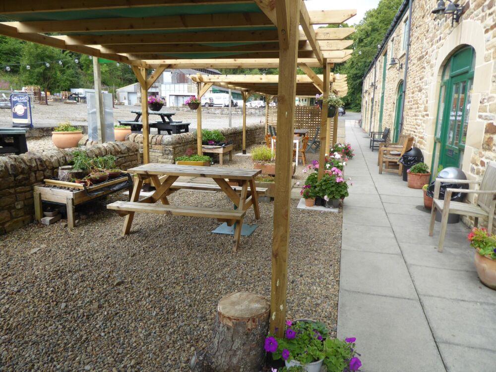 Riverside dog walk and industrial heritage, Northumberland - Northumberland dog walking places and cafe.jpg