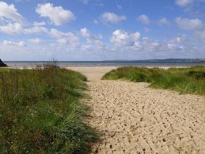 Par Sands dog-friendly beach, Cornwall - Driving with Dogs