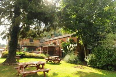 Dog walk and dog-friendly pub on the way to Devizes, Wiltshire - Driving with Dogs