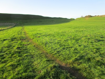 Historic dog walk near Dorchester, Dorset - Driving with Dogs