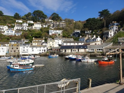 Polperro - dog walk, Cornwall - Driving with Dogs