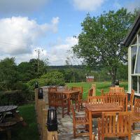 A375 Nature reserve walk and a dog-friendly pub near Honiton, Devon