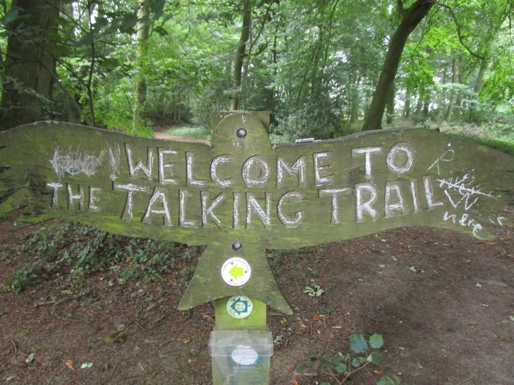 M40 Junction 5 dog walk, Oxfordshire - Dog walks in Oxfordshire