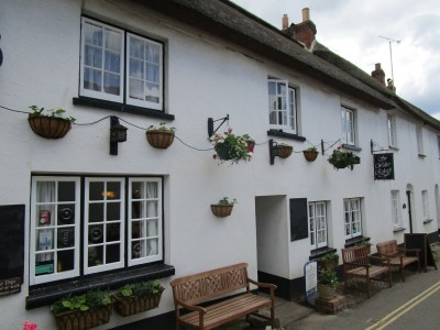 Village pub and dog walk near Exmouth, Devon - Driving with Dogs