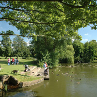 Dog walk near Market Bosworth, Leicestershire - Bosworth-Country-Park.jpg