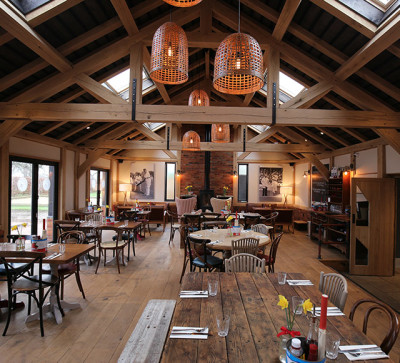 A1 Junction 9 dog-friendly village pub and dog walk, Hertfordshire - Driving with Dogs