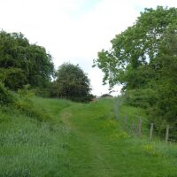 Castle ruins dog walk and country pub in the Vale of York, North Yorkshire - Dog-friendly pub and dog walk near York