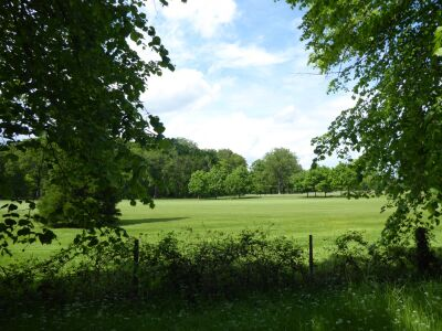 Woodhall Spa - accessible dog walk from a woodland tea house, Lincolnshire - Driving with Dogs