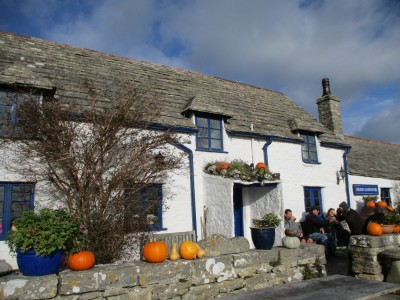 Really good dog walks and a quirky pub near Swanage, Dorset - Driving with Dogs