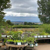 National Herb Centre Walks, Oxfordshire - 5476CF94-6822-472F-BCD4-E367D2E47252.jpeg