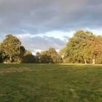 A10 dog walk near Cheshunt, Hertfordshire - A10 doggiestop.jpg