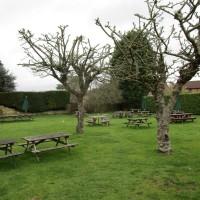 Limpsfield Chart dog-friendly pub and dog walk, Surrey - Surrey dog-friendly pubs and dog walks.JPG