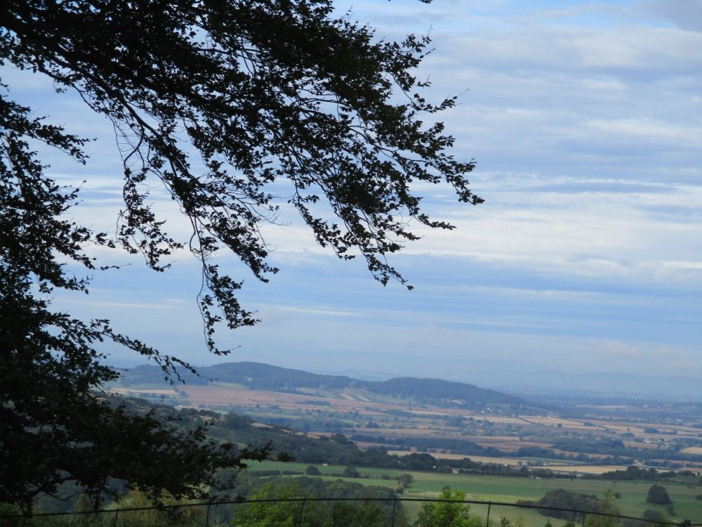Dog-friendly cafe with dog walk and outstanding views, Gloucestershire - IMG_3473.JPG