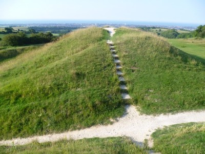 A24 Cissbury Ring dog walk, West Sussex - Driving with Dogs