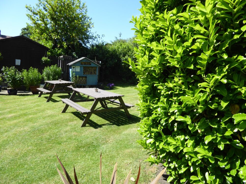 Dog-friendly pubs near campsites - The Blacksmiths in the Vale of York, North Yorkshire - P1010158.JPG