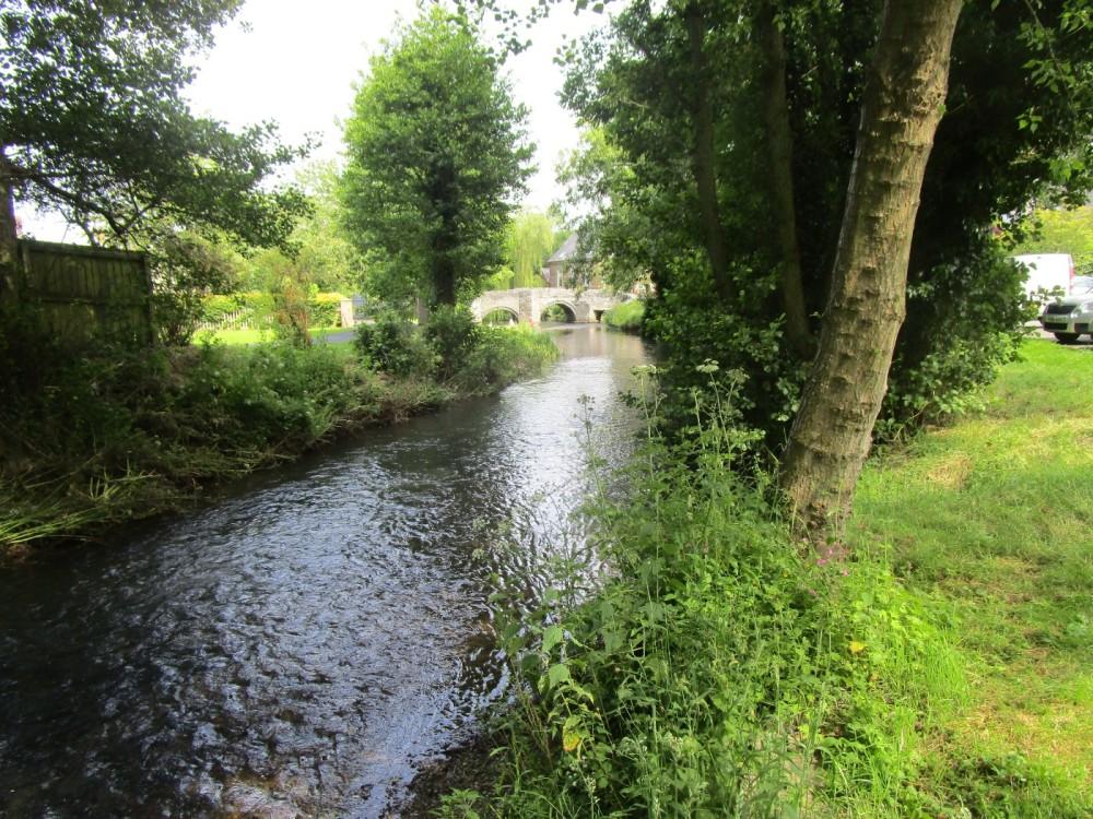 Brooding ruins, riverside dog walk and B&B, Shropshire - dog-friendly pubs and dog walks Shropshire.JPG