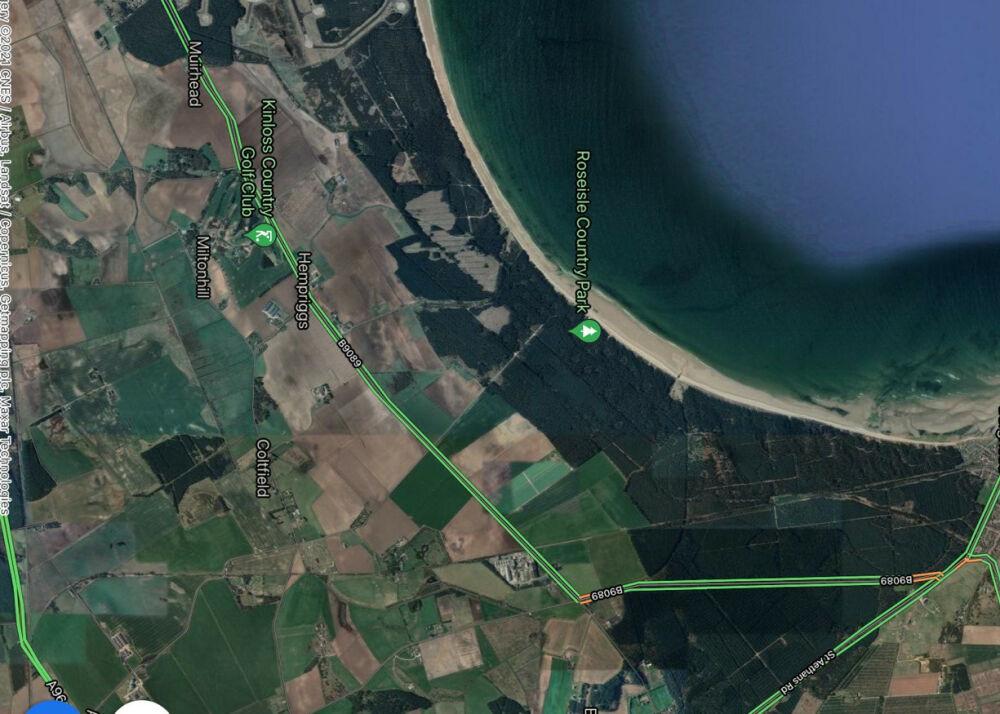 Roseisle country park with the dog, Scotland - BD5E3176-A5BC-4C9E-8149-A52C7962190C.jpeg