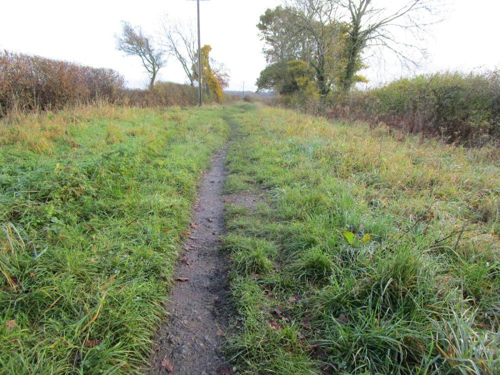 A420 dog walk and pub near Abingdon, Oxfordshire - Oxfordshire dog-friendly pub and dog walk