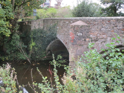 A38 River Tone dog walk and dog-friendly pub, Somerset - Driving with Dogs