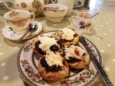 Dog-friendly Vintage Tea Room in Minehead, Somerset - Driving with Dogs
