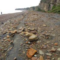 Unique dog-friendly beach near Seaham, County Durham - P1020678.JPG