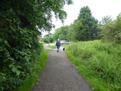 A689 Accessible dog walk on an old railway, County Durham - Driving with Dogs