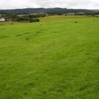M9 junction 9 battlefield dog walk, Scotland