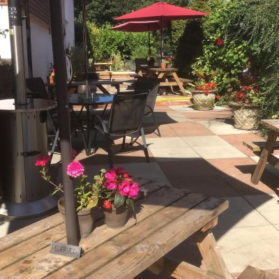 Country pub and dog walk near Saffron Walden, Essex - Driving with Dogs