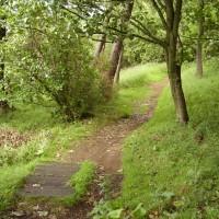 M9 Junction 11 Stirling dog walk, Scotland