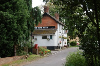 A3057 country pub and dog walk, Hampshire - Driving with Dogs