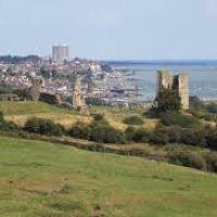 Hadleigh Country Park - accessible dog walks, Essex - Hadleigh Castle dog walk.jpg