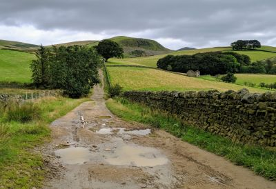 Stretch of the Paws in Dufton, near the A66 at Appleby-in-Westmorland, Cumbria - Driving with Dogs