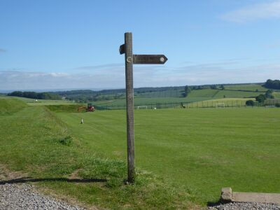 A dog walk on the Ebor Way and village tearooms, North Yorkshire - Driving with Dogs